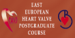 East European Heart Valve Postgraduate Course.